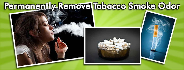 Tobacco-Smoke Odor